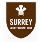Surrey Deaf County Cricket Club  - Surrey Deaf County Cricket Club